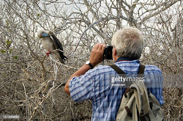 Tourist photographing Red footed Booby bird