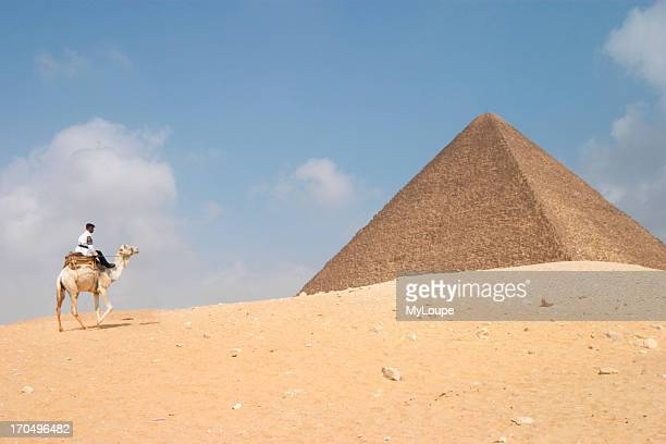 A Tourist Policeman On A Camel In Front Of The Pyramid Of Khufu Cheops The Giza Plateau Cairo Egypt