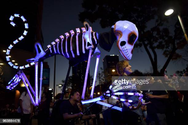 TOPSHOT A tourist poses in front of an illuminated 'alebrije' coloured Mexican folk art sculptures representing fantastical creatures during a parade...