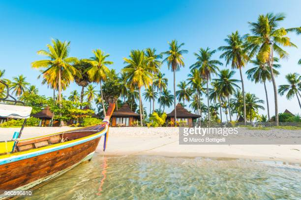 tourist resort's bungalows on the beach, ko mook, thailand - island stock pictures, royalty-free photos & images