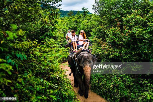 turista safari escursioni in elefante - elefante foto e immagini stock