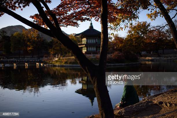 A tourist sits beside a lake beneath the yellow leaves of autumnal trees inside grounds of the Gyeongbokgung Palace in central Seoul on November 3...