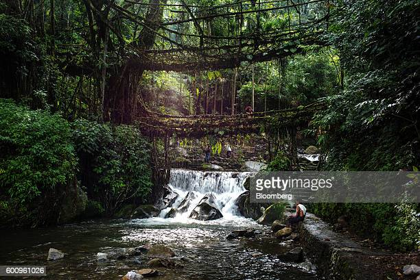 A tourist stands on a bridge known as a 'living root bridge' as water runs over a waterfall in Mawlynnong Meghalaya India on Monday Aug 15 2016 Two...