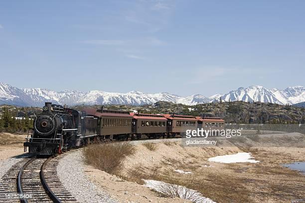 Tourist Steam Train