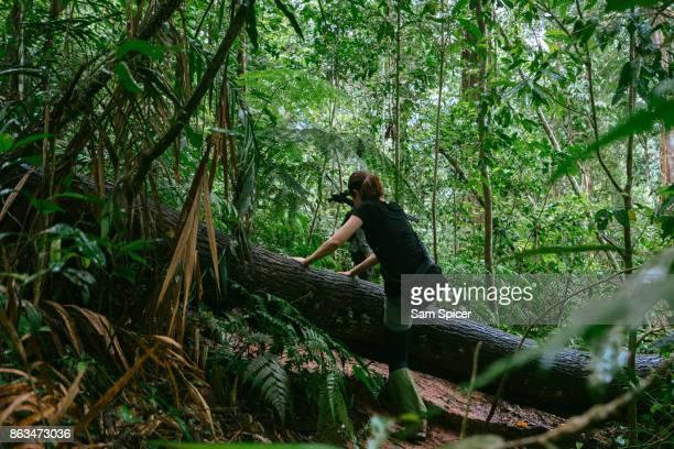 Tourist trekking through lush green Jungle, Thailand