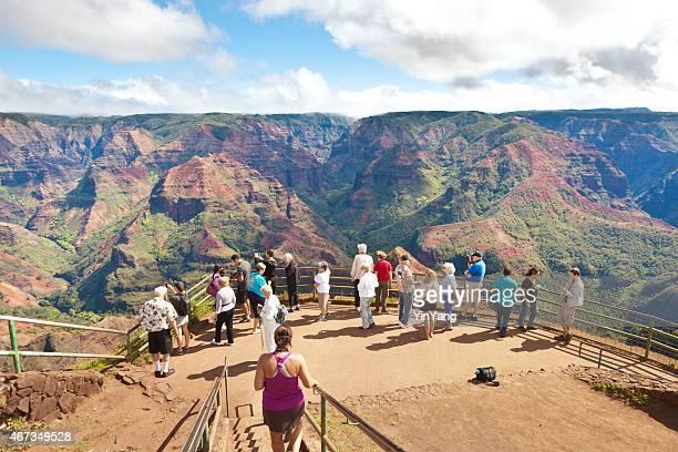 tourist visiting waimea canyon of kauai hawaii - waimea canyon stock pictures, royalty-free photos & images