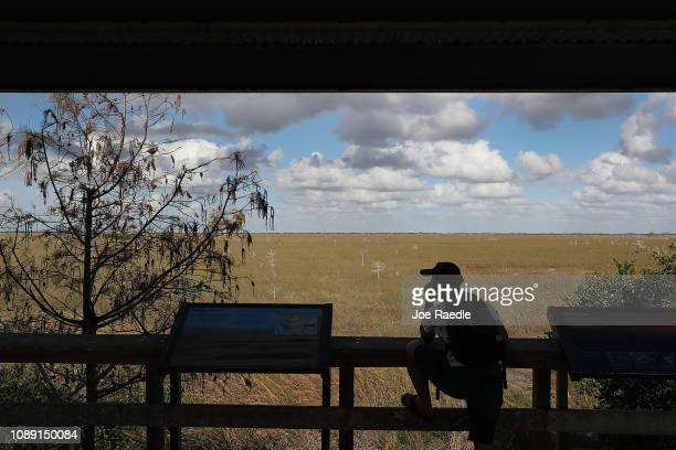 A tourist visits the Everglades National Park during the 12th day of a partial government shutdown on January 02 2019 in Everglades National Park...