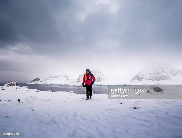tourist walking in danco island in antarctica - antarctique photos et images de collection