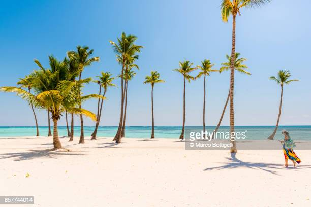 tourist walking on a palm-fringed beach, dominican republic. - punta cana fotografías e imágenes de stock