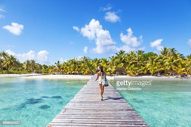 tourist walking on jetty to tropical island - clima tropicale foto e immagini stock