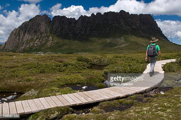 Tourist walking towards Cradle Mountain on Overland Track boardwalk.