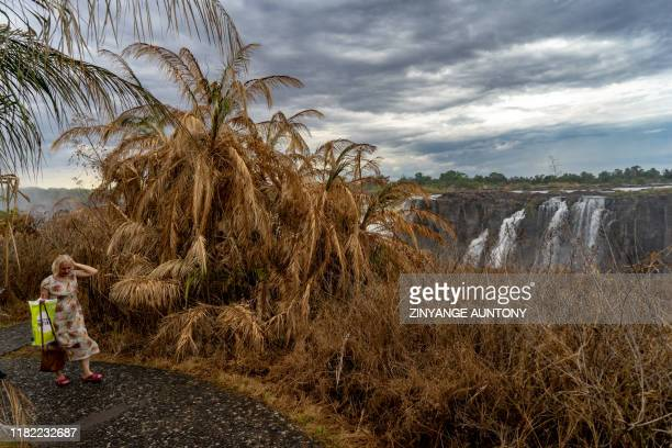 A tourist walks along a path in the dried rainforest at the Victoria Falls a major tourism attraction for Zimbabwe Victoria Falls on November 13 2019...
