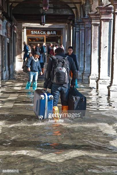 A tourist walks with his luggage along Saint Mark's Square during the 'Acqua Alta' on November 5 2013 in Venice Italy The high tide or acqua alta as...