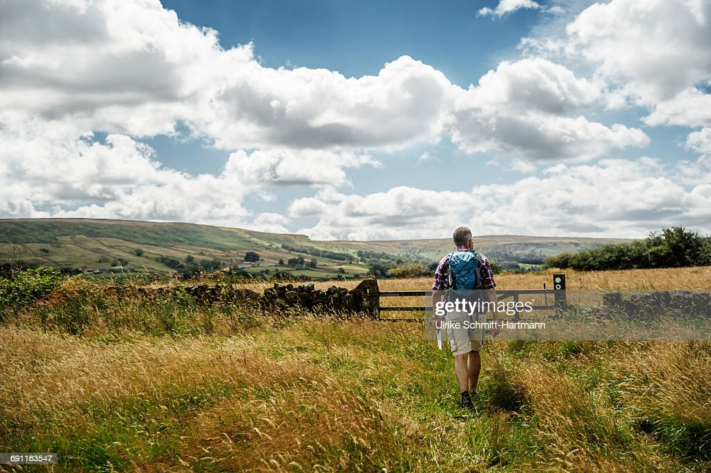 Tourist with bagpack walking through meadows : Stock Photo