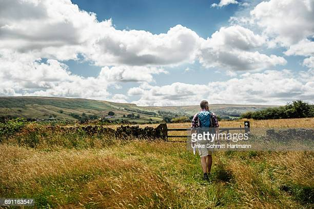 tourist with bagpack walking through meadows - rural scene stock pictures, royalty-free photos & images