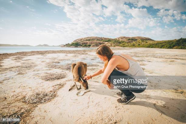 tourist with beach kangaroo