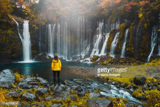 tourist woman admiring the shiraito falls, japan - 東海地方 ストックフォトと画像