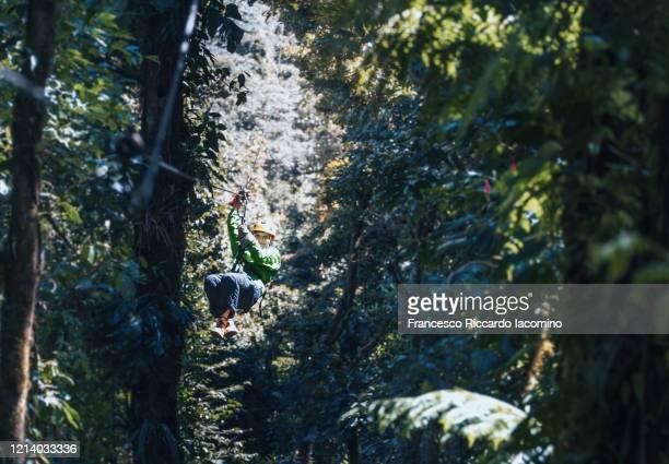 tourist woman on zip line in costa rica rainforest - iacomino costa rica foto e immagini stock