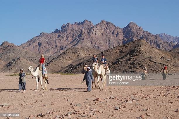 Touristen auf Kamelen in der Wüste bei Hurghada Ägypten Afrika Nomaden Berge Tier Tiere Wüstentour ProdNr 523/2006 Reise