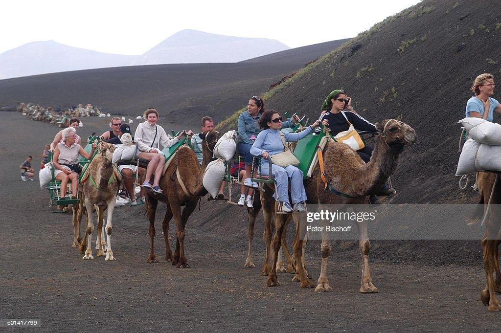Touristen-Kamelreiten, Nationalpark Timanfaya, Kanaren-Insel Lanzarote, Spanien, Eur : News Photo