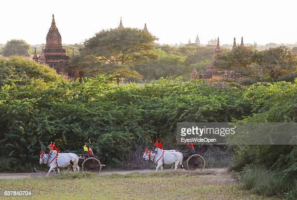 Tourists and local people visit the historical zone Bagan with farmers and oxcarts thousands of pagodas and temples on December 9 2016 in Bagan...