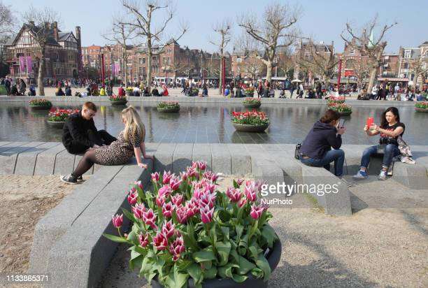 Tourists and locals enjoying next to the tulips in displayed by the fountain at Museumplein during the 5th edition of the Tulip Festival on March 30...