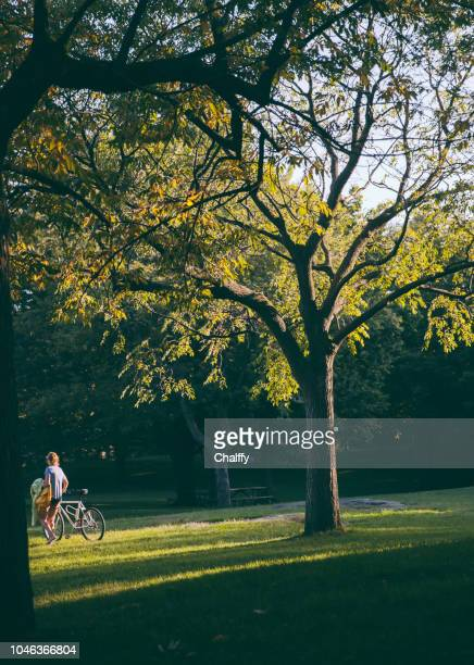 tourists at royal mount in montreal - river st lawrence stock pictures, royalty-free photos & images
