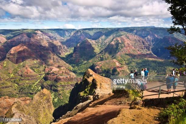 tourists at waimea canyon national state park of kauai island, hawaii - waimea canyon stock pictures, royalty-free photos & images