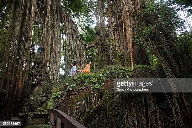 Tourists climbing bridge in jungle