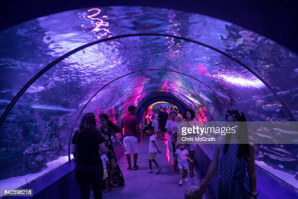 Tourists enjoy the Antalya Aquarium on September 3 2017 in Antalya Turkey Turkey's tourism industry spiraled into crisis in 2016 after a year of...