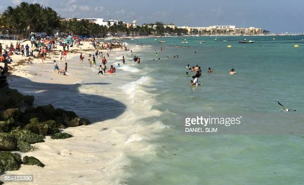 Tourists enjoy the beach at the Playa del Carmen in Quintana Roo state Mexico on March 28 2017 The Puerto Morelos Reef has been declared a National...