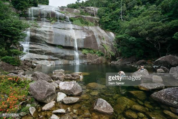 tourists enjoying japanese nature, yakushima island - 鹿児島県 ストックフォトと画像