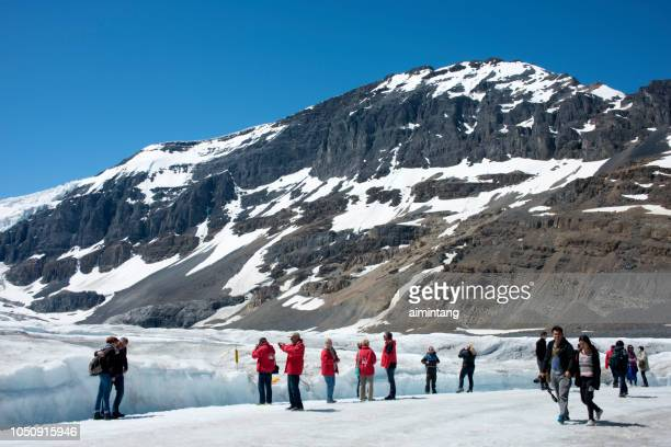 tourists exploring and photographing glacier at columbia icefield - columbia icefield stock pictures, royalty-free photos & images