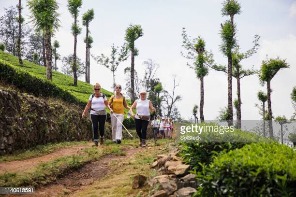 インドを探索する観光客 - 白杖 ストックフォトと画像