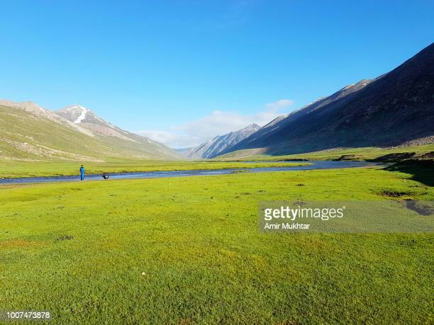 tourists hiking on lush green meadows - amir mukhtar stock photos and pictures