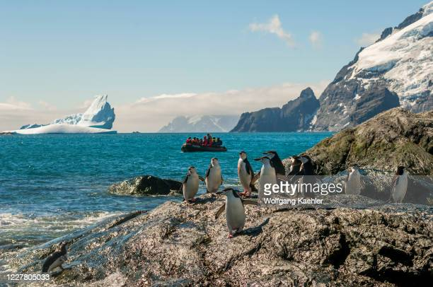 Tourists in a zodiac landing at Point Wild, where the men of the Shackleton Endurance expedition 1914 to 1916 survived, on Elephant Island, an island...