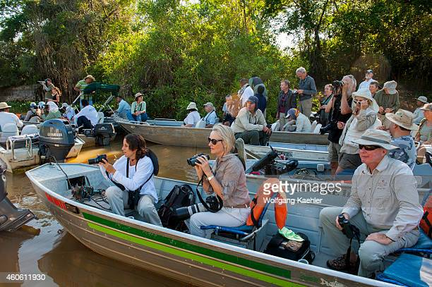 Tourists in boats at a jaguar sighting in one of the tributaries of the Cuiaba River near Porto Jofre in the northern Pantanal Mato Grosso province...