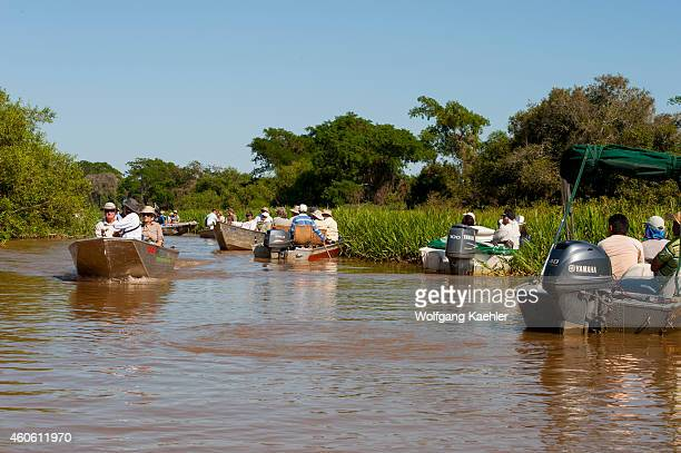 Tourists in boats at a jaguar sighting in one of the tributaries of the Cuiaba River near Porto Jofre in the northern Pantanal, Mato Grosso province...