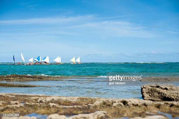 tourists in sailboats - porto galinhas stock photos and pictures