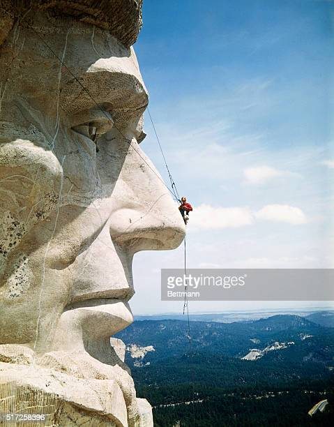 Tourists Never See Mount Rushmore from the Top Looking more like a pesky fly than a repairman Mike O'Mera check's Lincoln's nose for cracks in the...