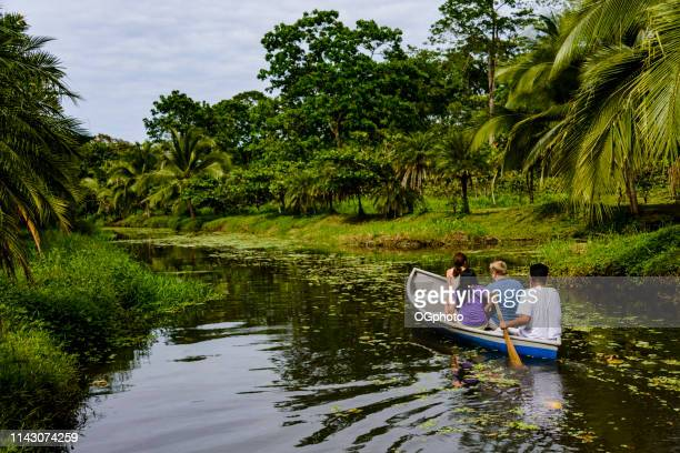 tourists on a wildlife boat tour - ogphoto stock photos and pictures