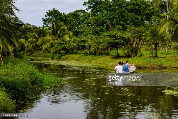 tourists on a wildlife boat tour - ogphoto foto e immagini stock
