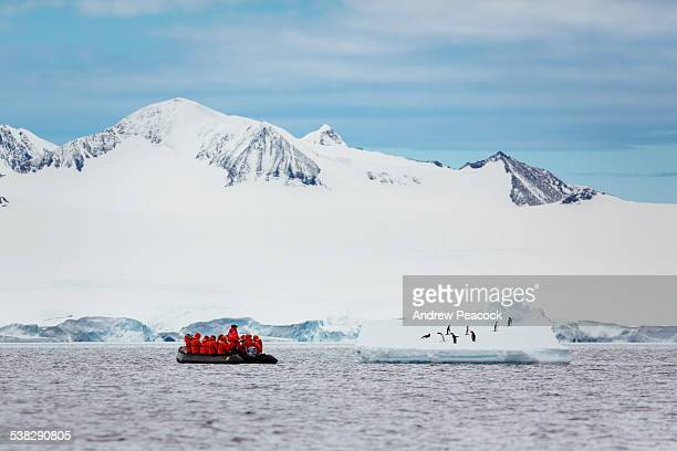 tourists on a zodiac cruise in antarctic sound - 南極海峡 ストックフォトと画像