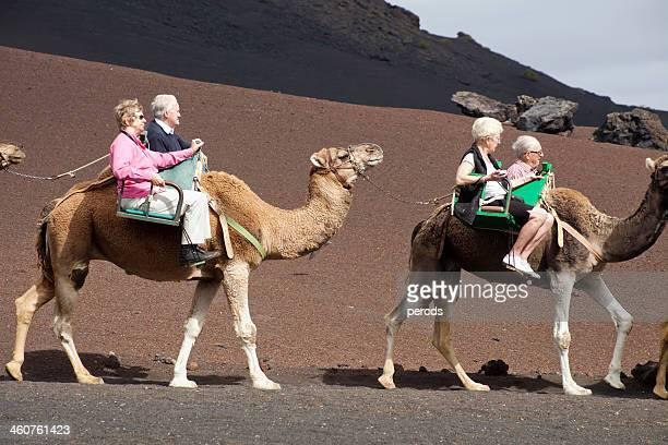 Tourists on dromedary