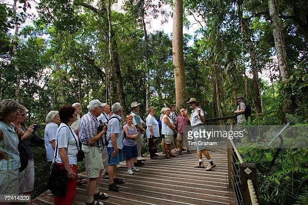 Tourists on rainforest boardwalk in Barron Gorge National Park North Queensland Australia