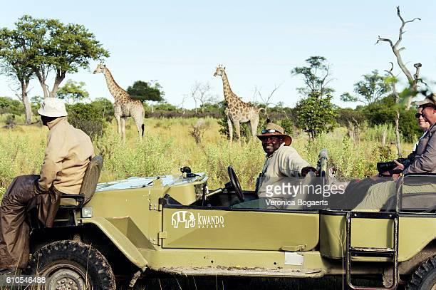 tourists on safari in selinda concession,botswana - großwild stock-fotos und bilder