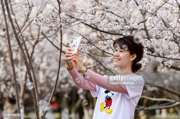 Tourists relax in Hohhot Park, Hohhot, Inner Mongolia, China, April 6, 2020.- PHOTOGRAPH BY Costfoto / Barcroft Studios / Future Publishing