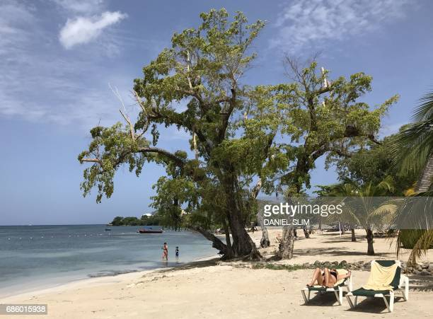 Tourists relax under a tree on Negril beach in Jamacia on May 20 2017 / AFP PHOTO / Daniel SLIM