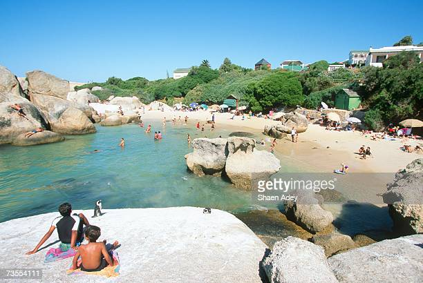 tourists relaxing on boulders beach - boulder county stock pictures, royalty-free photos & images