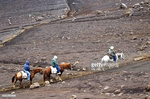 Tourists ride a horse in Summit of Puu Ulaula Maui Hawaii Summit of Puu Ulaula with departing several trekings foot or horseback to descend 900...
